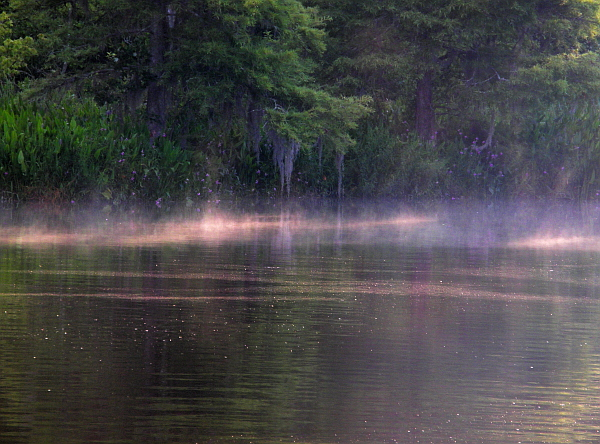 Mist rising off the river at dawn
