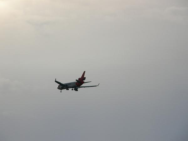 Martinair airplane landing in Miami, FL
