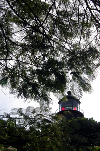 Top of the lighthouse seen through the trees
