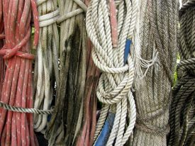 Today's inlet: Dock lines 2.