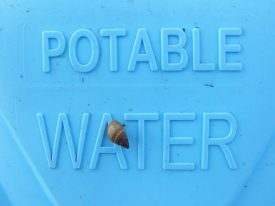 Today's inlet: Potable water.