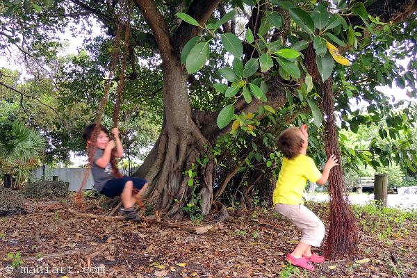 Kids swinging from tree vines.