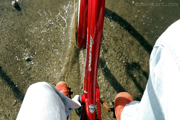 Closeup of photographer's legs and bicycle while riding through a puddle.