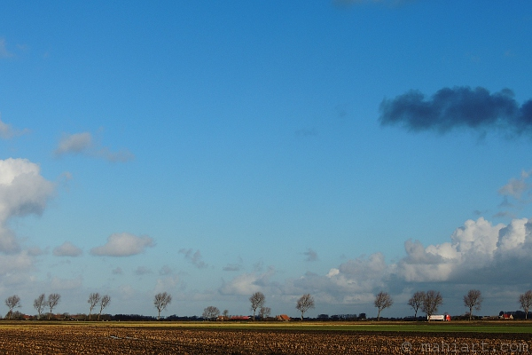 Flat Dutch landscape