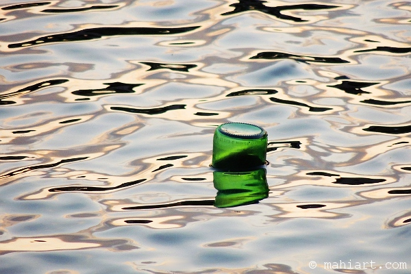 Floating beer bottle in the Miami River