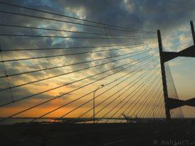 Dames Point Bridge.