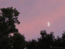 Half moon, rising.
