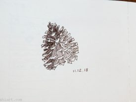 Today's tiny sketch: pine cone.