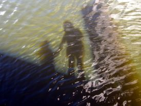Today's inlet: Floating shadows.