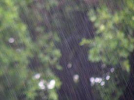 Today's inlet: Rain.